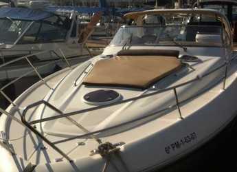 Rent a yacht in Muelle de la lonja - Bavaria 38 SPORT
