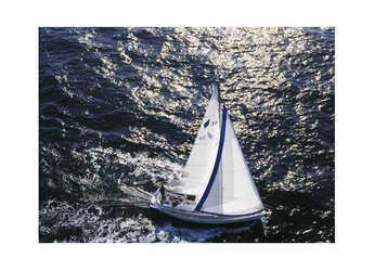 Rent a sailboat in Lemmer - Bavaria 36 Cruiser (3Cab)