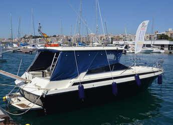 Alquilar lancha Sunseeker Portofino 31 en Puerto de blanes, Girona