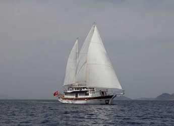 Rent a schooner in Lefkas Nidri - Gulet Athena