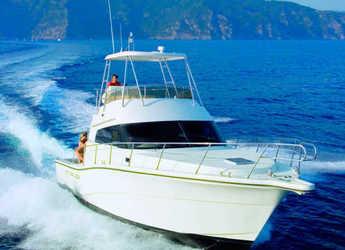 Chartern Sie yacht in Port d´Alcudia/Port de Alcudiamar Marina - Rodman 1250