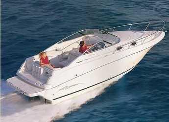 Chartern Sie motorboot in Puerto Banús - Monterey 262 Cruiser