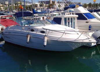 Chartern Sie motorboot Monterey 262 Cruiser in Puerto Banús, Marbella