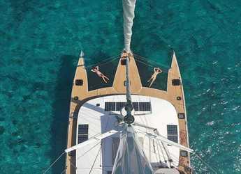 Rent a catamaran Neel Trimaran 51 in Port Louis Marina, Saint George´s