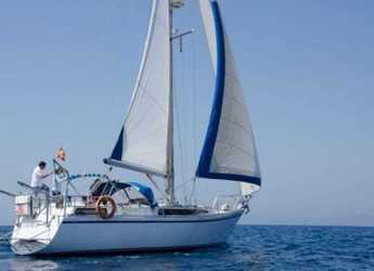 Rent a sailboat in Port Olimpic de Barcelona - Puma 37