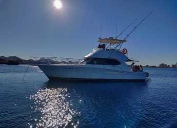 Chartern Sie yacht in Puerto Deportivo Tomas Maestre - Riviera