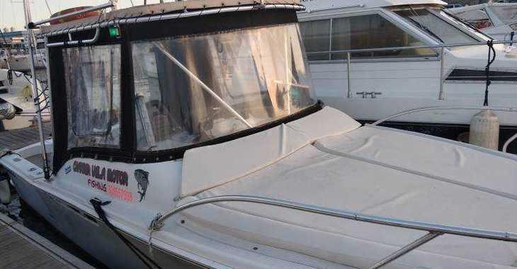Rent a dinghy in Marina del Sur. Puerto de Las Galletas - Luhrs 25 Tournament