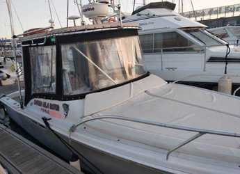 Rent a dinghy in Marina del Sur. Puerto de Las Galletas - Luhrs 25 Tournament