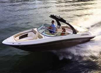 Rent a motorboat in Club Naútico de Sant Antoni de Pormany - Sea Ray 230