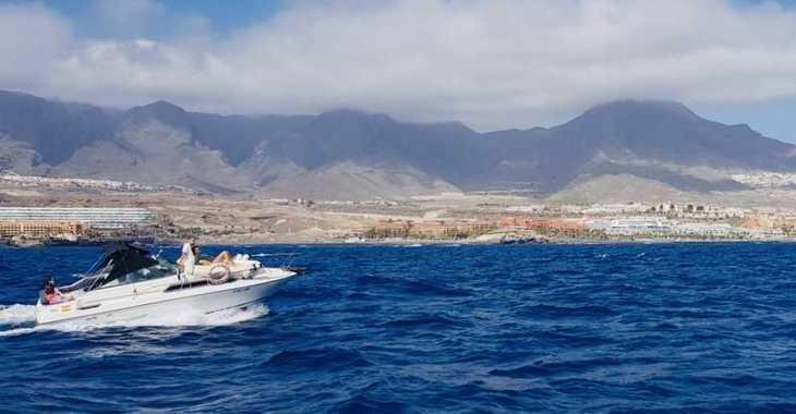Chartern Sie motorboot in Port of Santa Cruz de Tenerife - Sea Ray 230