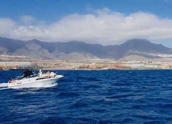 Rent a motorboat in Port of Santa Cruz de Tenerife - Sea Ray 230