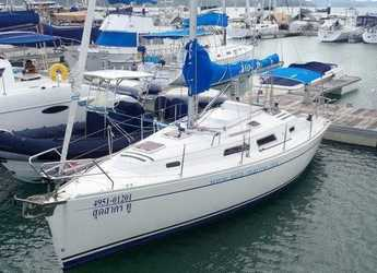 Rent a sailboat in Yacht Haven Marina - Hanse 315