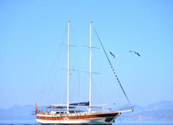 Rent a schooner in Ece Marina - Gulet QUEEN LILA