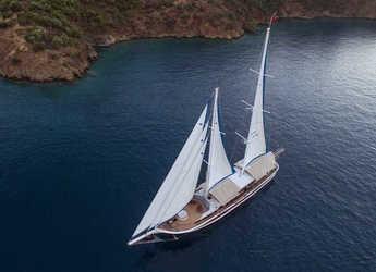 Rent a schooner in Ece Marina - Gulet Kayhan Kaptan