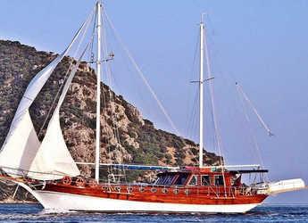 Chartern Sie schoner in Netsel Marina - Gulet Erden
