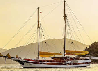 Louer goélette à Netsel Marina - Gulet Ayla Sultan