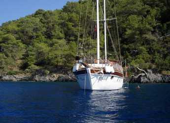 Rent a schooner in Ece Marina - Gulet Sevahin