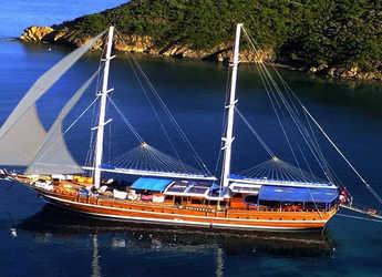 Rent a schooner in Ece Marina - Gulet Semercioglu 4