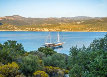 Rent a schooner in Ece Marina - Gulet Alaturka 2