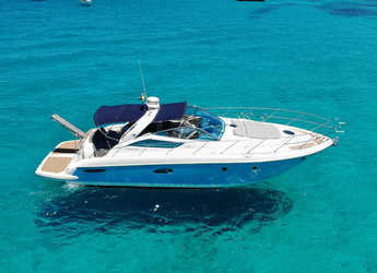 Rent a motorboat in Marina Botafoch - Cranchi 43