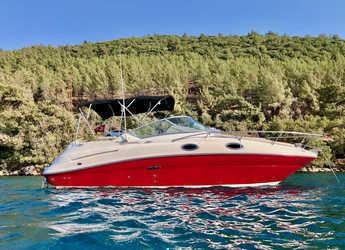 Chartern Sie motorboot in Ören / Bodrum - Sea Ray Sundancer 240