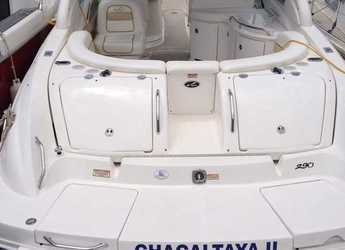 Chartern Sie motorboot Sea Ray 290 Bow Rider in Marina Botafoch, Ibiza (stadt)