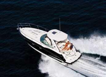 Chartern Sie yacht in Marina Ibiza - Monterey 355