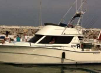 Rent a motorboat in Marbella - RODMAN 12,50 R