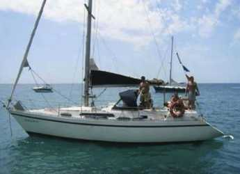 Rent a sailboat in Pltja de ses salines - Puma 37