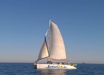 Alquilar catamarán en Port Olimpic de Barcelona - Catamarán vela 80