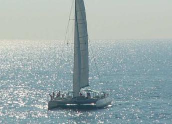 Rent a catamaran in Port Olimpic de Barcelona - CATAMARANES VELA