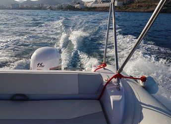 Alquilar lancha Selva 470 DS en Marina Botafoch, Ibiza (ciudad)