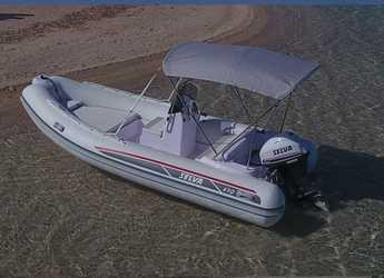 Chartern Sie motorboot Selva 470 DS in Marina Botafoch, Ibiza (stadt)