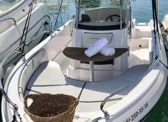 Alquilar lancha Ranieri 19s en Marina Botafoch, Ibiza (ciudad)